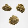 Starter Pack Indoor Fleurs CBD cannabis