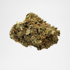 Fleurs CBD Super Purple Bud