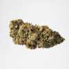 Fleurs CBD Christmas Berry , swiss medical cannabis